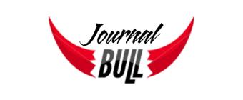 Bulljournal  ⚒ Glück auf